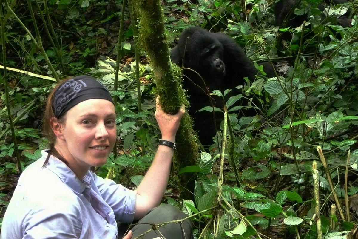 The gorilla trek experience