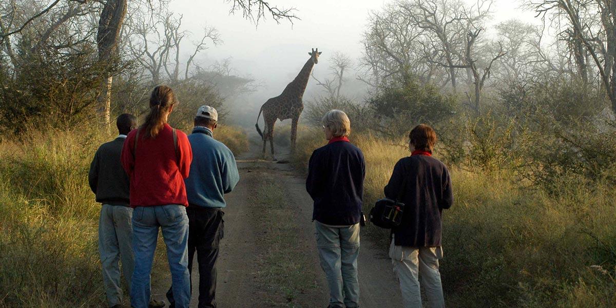 Uganda Walking Safari